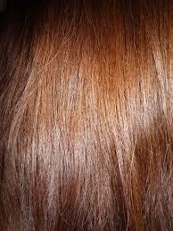 Fischer Saller Scale Chart Brown Hair Wikipedia