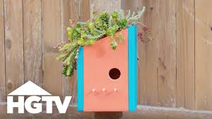 how to make a living roof birdhouse way to grow