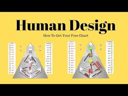 What Is Human Design Advice For Reflectors Inspired Human