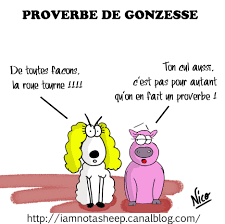 Proverbes Damour Humour Citations Clecyluisvia Web