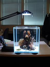 aquarium for office. #Photos Mini Aquarium Design Ideas → Https://wp.me/p8owWu-1ST For Office R
