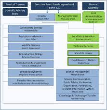 Organisation Chart Izw Leibniz Institute For Zoo And