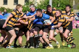 combe down yellow faced walcot blue on the final day of the