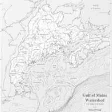 Gulf Of Maine Chart Gulf Of Maine Council Organizational Chart 104 Download