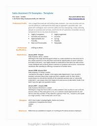 Professional Retail Sales Assistant Resume Sample Resume For Retail