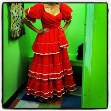 Scored this gorgeous vintage #flamencodancer dress in Goodwill! Pic by Mary  Walsh-Reynolds | Long sleeve dress, Dresses with sleeves, Dresses