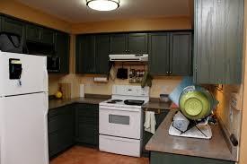Kitchen Design White Appliances Black Kitchen Cabinets With White Appliances Fabulous Black