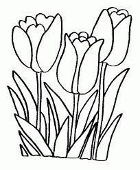 Print Spring Flowers Coloring Pages Children Or Download Spring