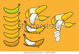 Banana Ripeness Chart Ripeness Different Colors Chart Single Peel The Arts Food
