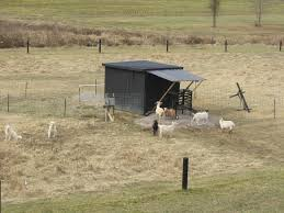 likeable portable goat shelter plans ikga shelters