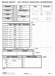 Nurse Brain Sheets Icu With Charting Reminders Nurse