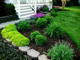 narrow garden bed ideas yard designs
