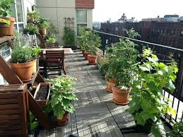 patio herb garden apartment decorating ideas small balcony privacy outside