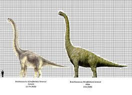 brachiosaurus size jurassic park brachiosaurus size chart by brenton522 on deviantart