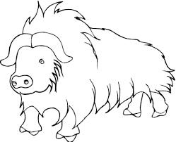 himalayan animal coloring pages
