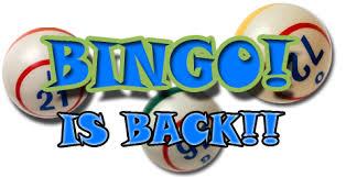 Image result for bingo returns