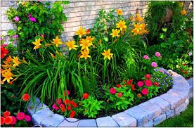 Small Picture Stylish Flower Gardening For Beginners Garden Ideas Flower