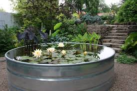 a metal planter that s a water garden