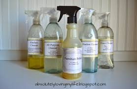 DIY Spray Bottle Labels for Homemade Cleaners