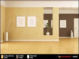 asian paints colortrendy asian paints interiors  beautiful interior paints  paint