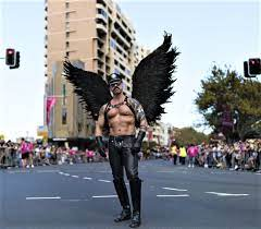 BARRY the BIRDER: Gay Bird?