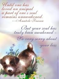 Loss Of Pet Quotes Extraordinary Inspirational Quotes About Losing A Dog Stirring Inspirational Loss