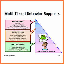 behavior support plan template. Behavior Support Plan behavior Support Plan positive Behaviour