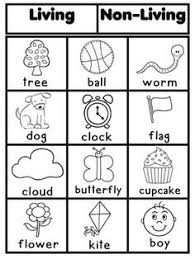 Venn Diagram Living And Nonliving Things 8 Best Living Vs Non Living Images Kindergarten Science