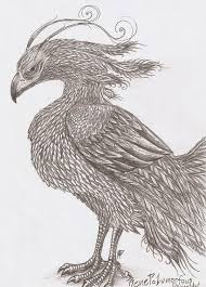 Drawings Of Phoenix Pencil Drawings Of Phoenix Drawings Pencil Drawings Drawings