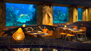 underwater restaurant disney world. Coral Reef Restaurant At Epcot Walt Disney World Resort Underwater A