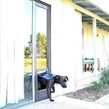 slider doggie doors cat door for sliding glass pet patio the large dog insert perth nz slider doggie doors sliding glass