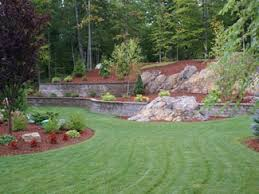 Best 25 Sand Backyard Ideas On Pinterest  Sand Fire Pits Walk Landscape My Backyard