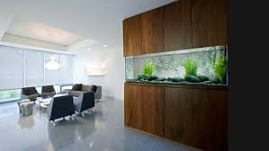 fish tank for office. modern wall fish tank for office k