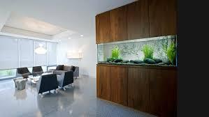 office aquarium. Modern Wall Fish Tank Office Aquarium I