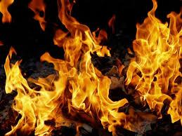 Image result for Fireworks Gastroenterologist