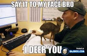 funny-fun-cool-deer-baby-meme-animal-pic-pics-images-photos ... via Relatably.com