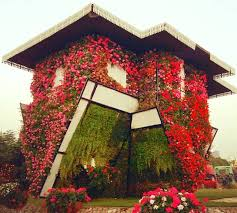the upside down fl house was introduced at the dubai miracle garden in 2016