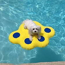 pool floats for dogs. Fine Floats Paws Aboard Dog Pool Float Small 255 X 29 By Doggy Lazy Raft On Floats For Dogs A