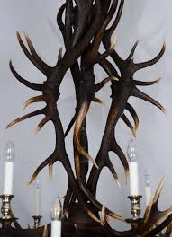 this outstanding antler chandelier was custom designed and made from naturally shed large red deer from