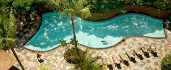 an aerial view of a serpentine pool with a rock retaining wall surrounded by lounge