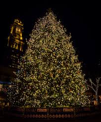 faneuil hall christmas tree lighting. Boston\u0027s First And Tallest Tree Lighting At Faneuil Hall Christmas O