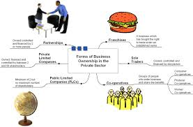 forms of ownership intermediate business management forms of ownership