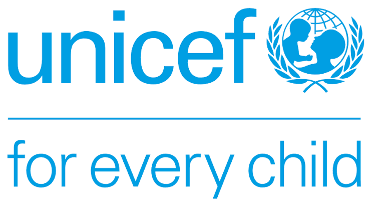 UNICEF Graduates Job Recruitment – HR & IT