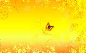 fl yellow wallpaper fl yellow desktop background