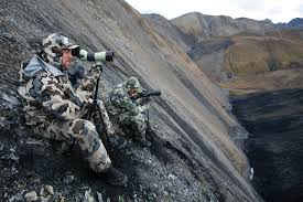 Kuiu Camo Patterns Amazing Camouflage More To Consider Than You Might Think Part I
