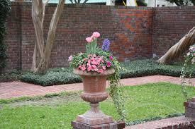 Small Picture Easy to Create Container Gardens for Houston Summers