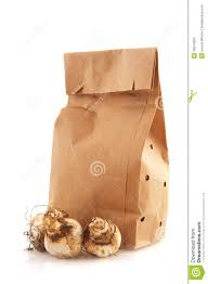 White Paper Flower Bulbs Paper Bags With Flower Bulbs Stock Photo Image Of Bags