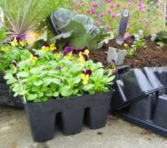 Recycling Plastic Plant Pots and Containers | North Carolina Cooperative  Extension