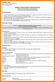 6 Software Engineer Resume Examples Letter Signature
