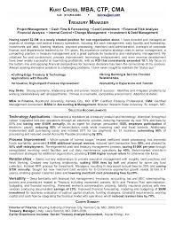 Treasury Analyst Resume Sample It Business Analyst Resume Treasury ...